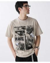ベージュ●BOTANIZE別注 フォトプリントTシャツ ナノ・ユニバースメンズ(オリジナル)○6680124049