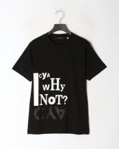 ブラック●TS WHY NOT2○CYA18U0136