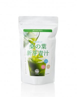 熊本県産 乳酸菌入り 桑の葉新芽青汁 3袋セットを見る