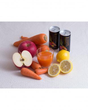くびれ生活 キャロット&アップル 190g 30缶セットを見る