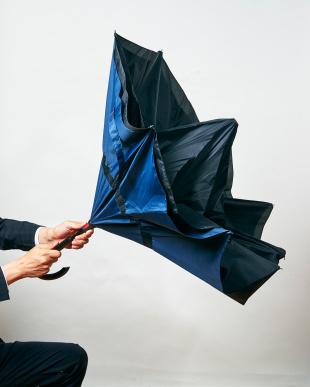 ブラックレッド 2重傘 circus(サーカス) 晴雨兼用を見る
