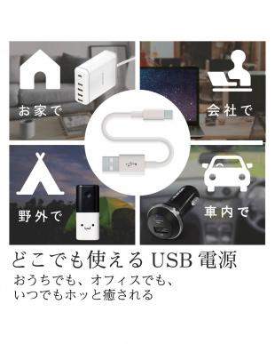 グレージュ 「USBブランケット」 タイマー付き/丸洗いOK/エクリアwarmを見る