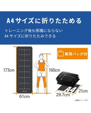 ブラック 「トレーニングマット」 ガイドライン付き/厚さ4mm/折り畳み式/持ち運び用バッグ付きを見る