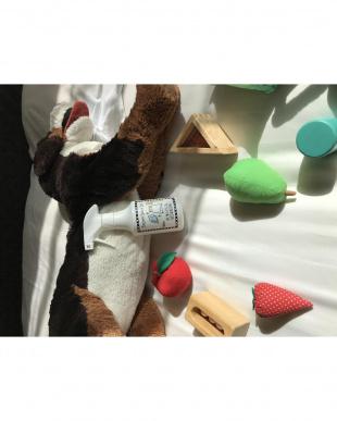 水洗いシュッシュ(ベッド&ルーム)本体&詰め替え用セットを見る