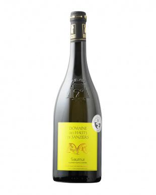 秋冬に飲むコクあり白!世界の辛口白ワイン6本セットを見る