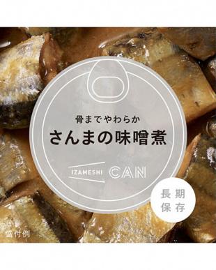 イザメシCAN 6缶セットを見る