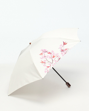 カワセミとヤマサクラ 日本製 家庭画報 今森光彦コラボ オーレリアンの傘を見る