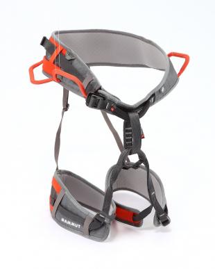 titanium-dark orange  Ophir 3 Slideを見る