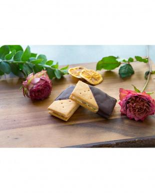 CHAYAマクロビ「シーズナル焼菓子バターサンド・チョコレート5個」セットを見る