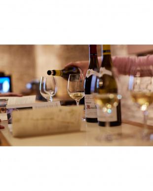 『ブルゴーニュを代表する白ワイン銘醸地』シャサーニュ・モンラッシェを見る
