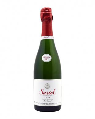 オーガニックワイン 赤・白・泡6本セットを見る