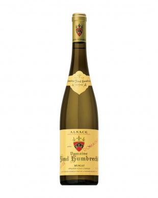 『ビオディナミへの情熱が醸す希少な限定品!!アルザスワイン お手軽に堪能できる3本セット』を見る