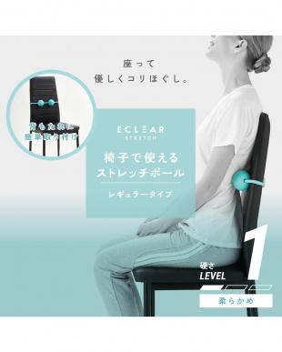 ライトブルー 「椅子で使えるストレッチボール」 ソフト レギュラーを見る