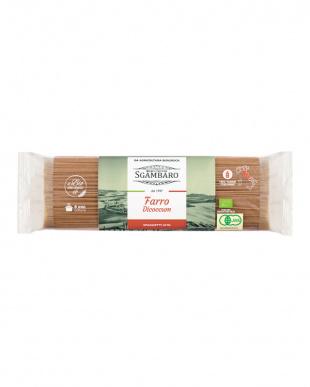 オーガニックスパゲッティ(スペルト小麦) 4個セットを見る