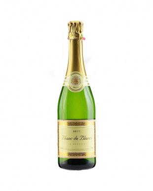 フランス・スペイン飲み比べ泡4本セットを見る