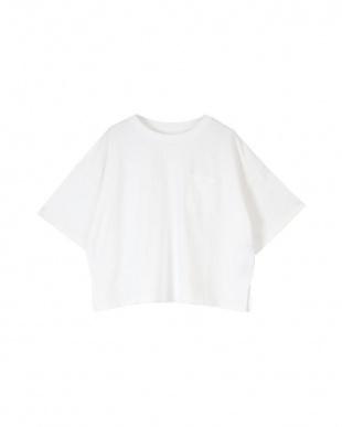 オフホワイト USAコットンカットソーショート丈Tシャツを見る