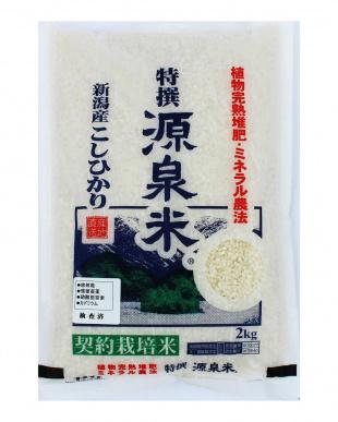 新潟産 特撰源泉米コシヒカリ(白米) 2kg  2袋セットを見る