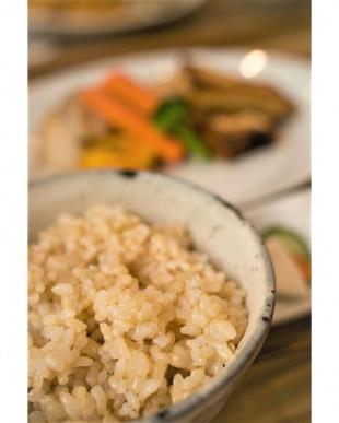 新潟産 特撰源泉米コシヒカリ(玄米) 5kgを見る