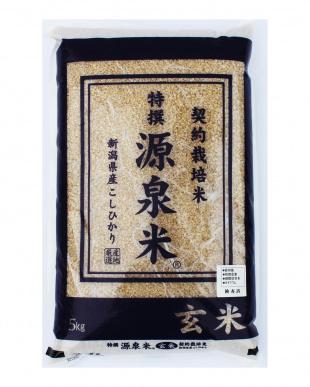 新潟産 特撰源泉米コシヒカリ(玄米) 5kg  5袋セットを見る