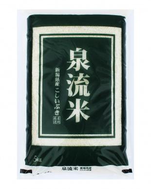 新潟産 泉流米こしいぶき 5kg  5袋セットを見る