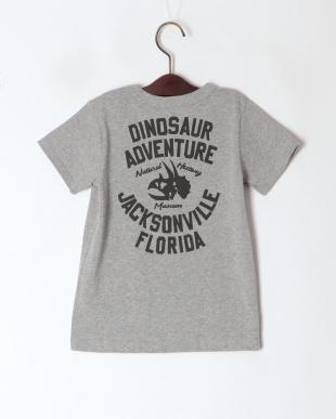 グレー Great Dinosaur Tシャツを見る