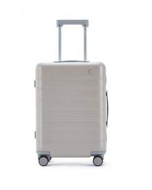 White x Brown NINETYGO Manhattan luggage 20