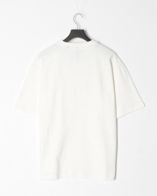 シロ OE天竺Tシャツを見る