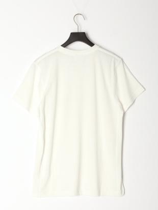 ホワイト Tシャツ[和紙][アーチロゴ]を見る