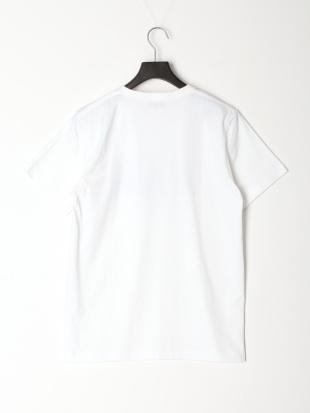 ホワイト Tシャツ[VANロゴ]を見る