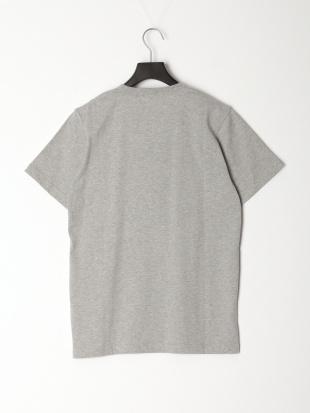 グレー Tシャツ[VANロゴ]を見る