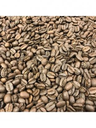 メキシコ産 太陽と森の楽園コーヒー 豆を見る