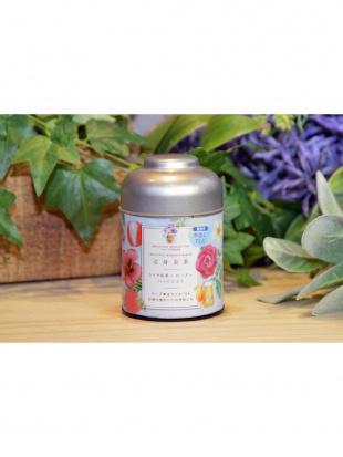BEAUTY&DETOX 夏の美肌&デトックス冷茶2缶セット(500mL用水出し茶)を見る
