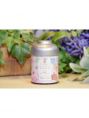 BODY RECOVERY 南国ハーブの冷茶ブレンド2缶セット(500mL用水出し茶)を見る