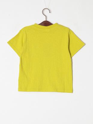 ライム 4柄サガラワッペンTシャツを見る