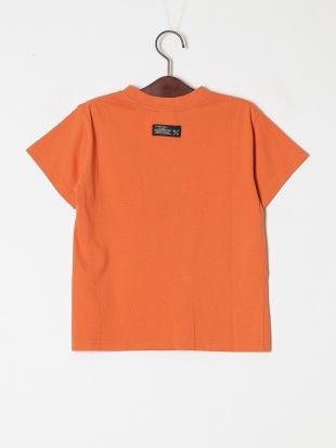 オレンジ 3柄ダイナソーロゴTシャツを見る
