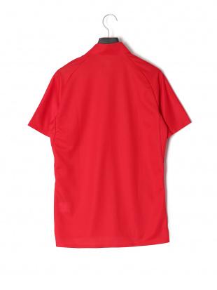 レッド DESCENTE TRIATHERON 半袖ポロシャツ SWISS POLO SHIRTを見る