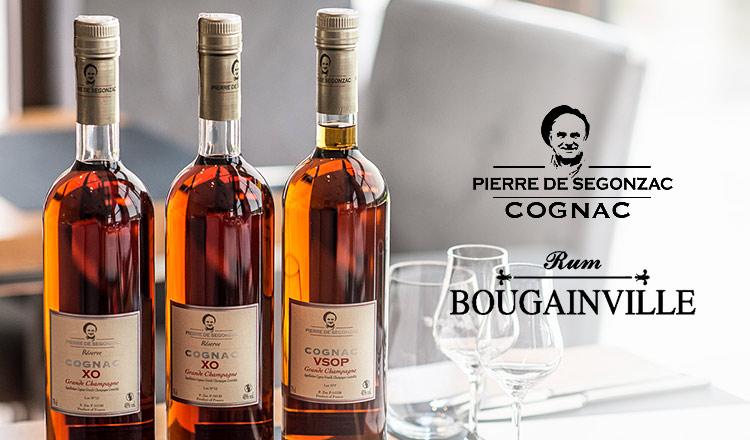 PIERRE DE SEGONZAC / BOUGAINVILLE
