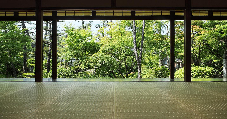 倉敷のい草 MADE IN JAPAN